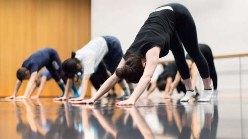 A full colour image taken in a studio showing a class in various stages of the yoga position Downward Dog. Image by Pari Naderi